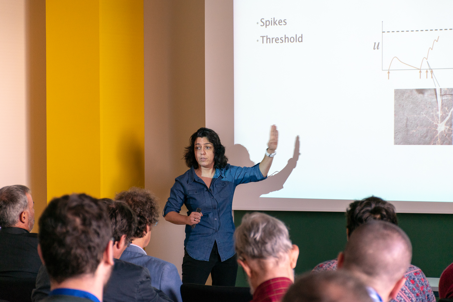SPICE Workshop: Spintronics meets Neuromorphics